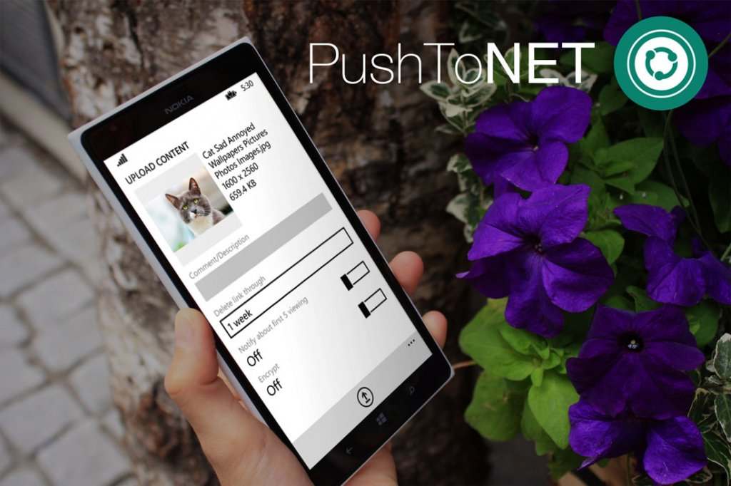 We Present You – The PushToNet App!