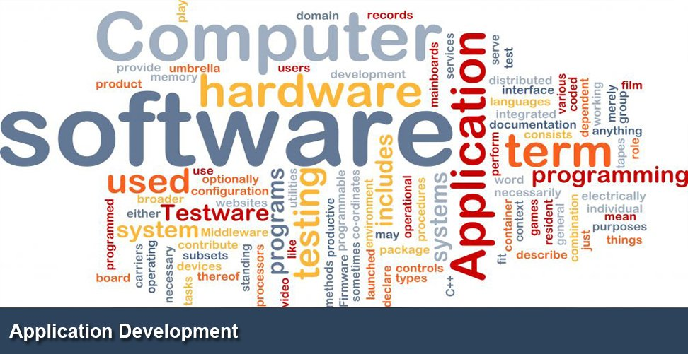 Advantages of Software Development Services in Business Growth