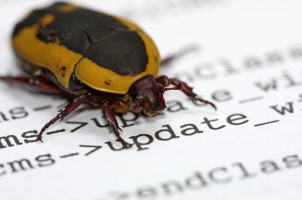 What About Bug Free Software?